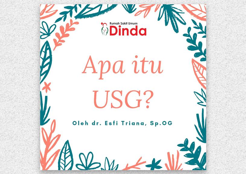 Apa itu USG (Ultrasonografi)?