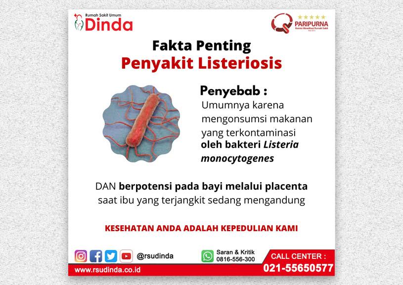 FAKTA PENTING PENYAKIT LISTERIOSIS